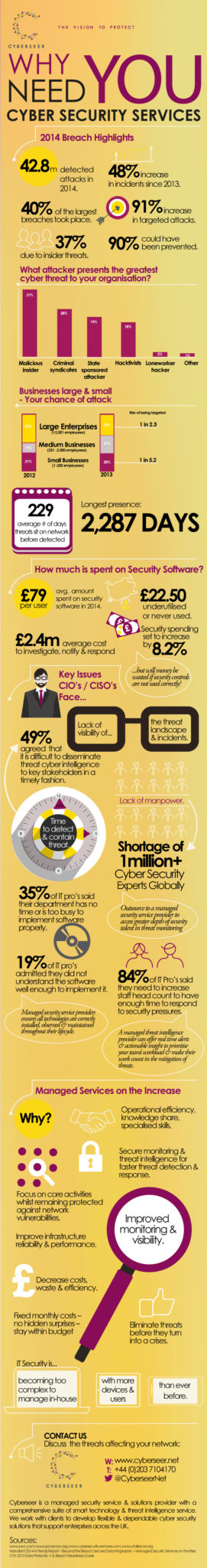 Infographic - why you need cyber security services